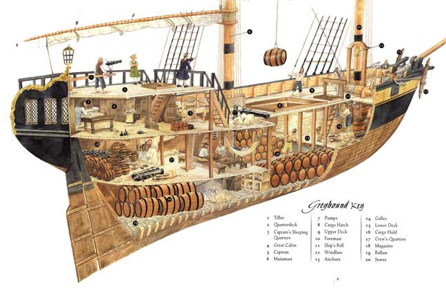 PirateDiary Ship Diagram Rarest Kind Of Best