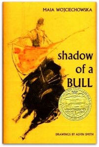 Shadow-of-a-Bull