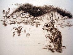 ae42220e896f9e36912293e72c46efa9--rabbit-robert-richard